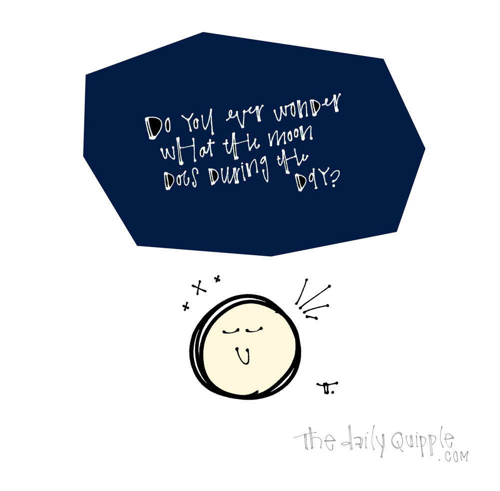 A Crater Question Has Never Been Asked | The Daily Quipple
