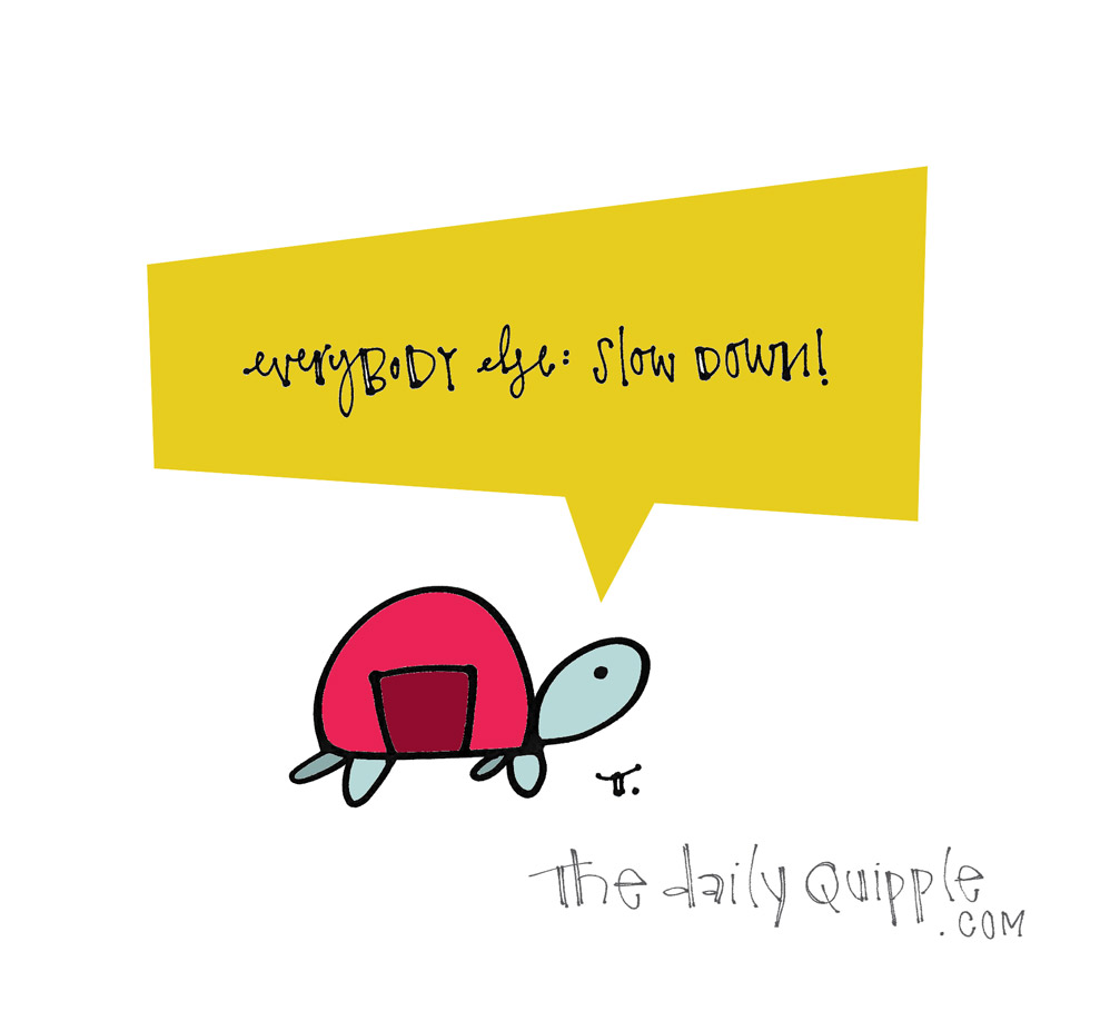 Slow Down Everybody   The Daily Quipple