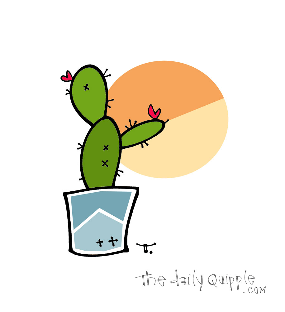 Thankful for Another Sunrise   The Daily Quipple