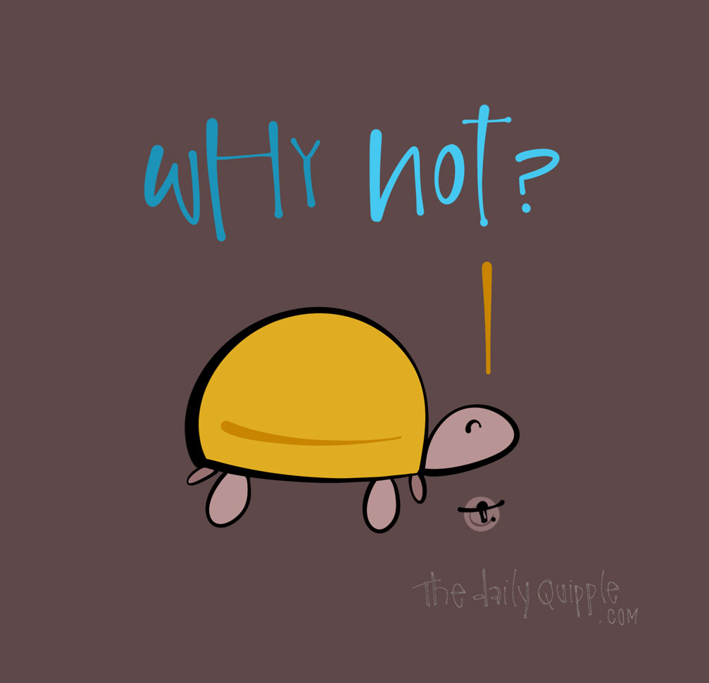 Ask Yourself This   The Daily Quipple