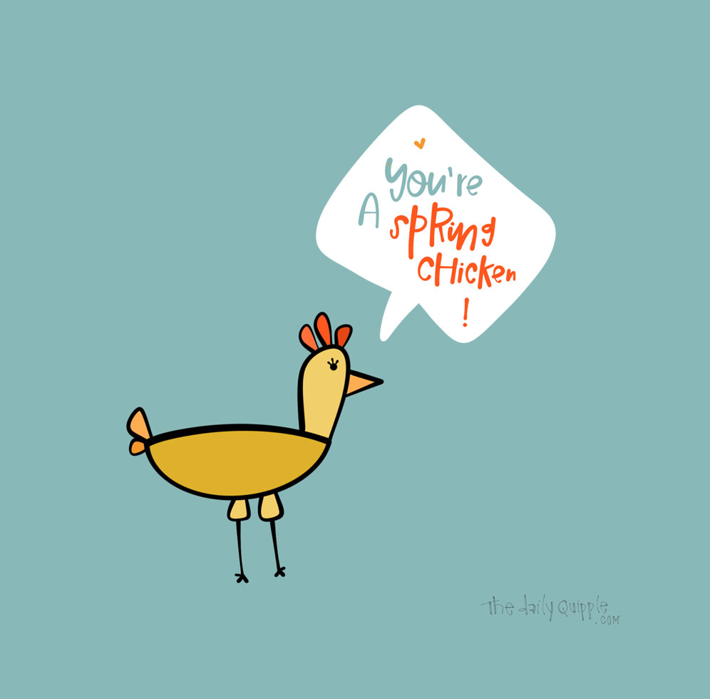 Spring Chicken | The Daily Quipple