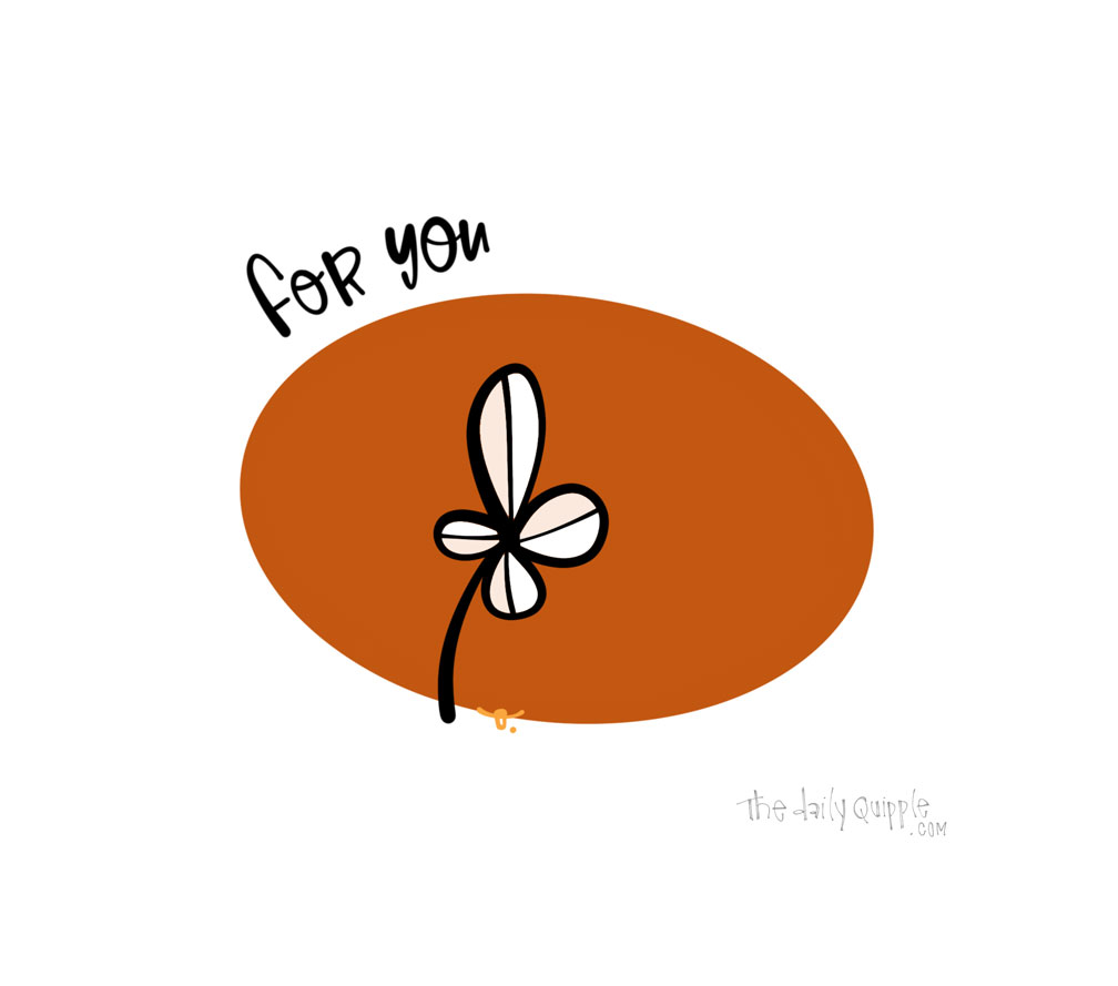 A Little Bloom | The Daily Quipple