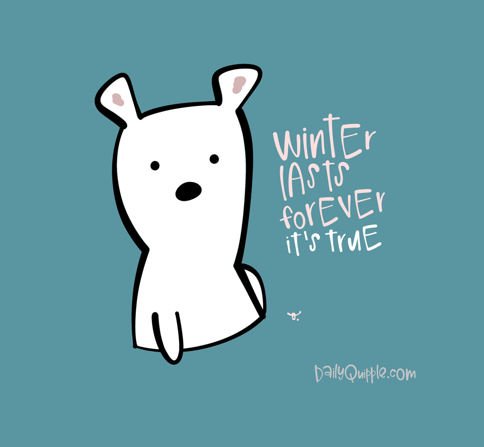 Winter Bear Says   The Daily Quipple