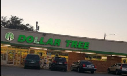 Complaint sends inspectors to Wichita Dollar Tree; One dead mouse, fresh droppings in back room along floor/wall juncture and around the furnace