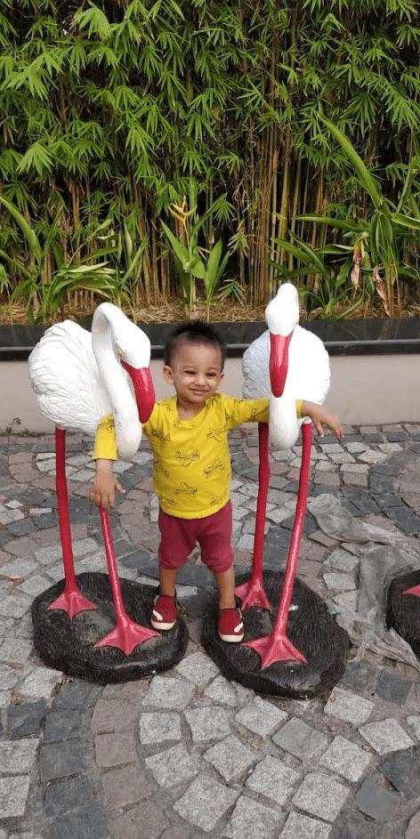 Beautiful Flamingo Archetype
