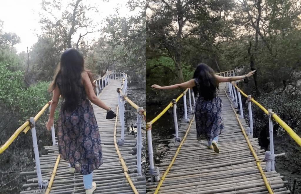 Bamboo bridge, nature trail leading to bird-watching point