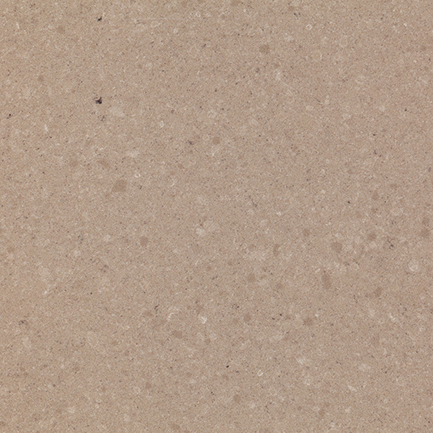 Fossil Ammonite 855 quartz
