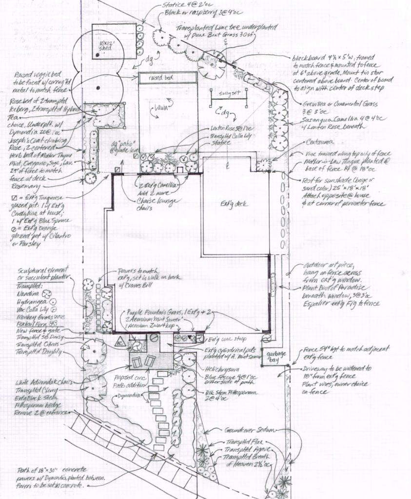 Drafted plan by Santa Barbara educated gardener and plant savvy landscape architect Katherine Farhadian
