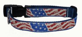 American Wavy Flag