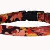 Fall Leaves Dog Collar