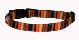 Fall Stripes (Cotton)