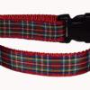 Plaid Royal Stewart Dog Collars