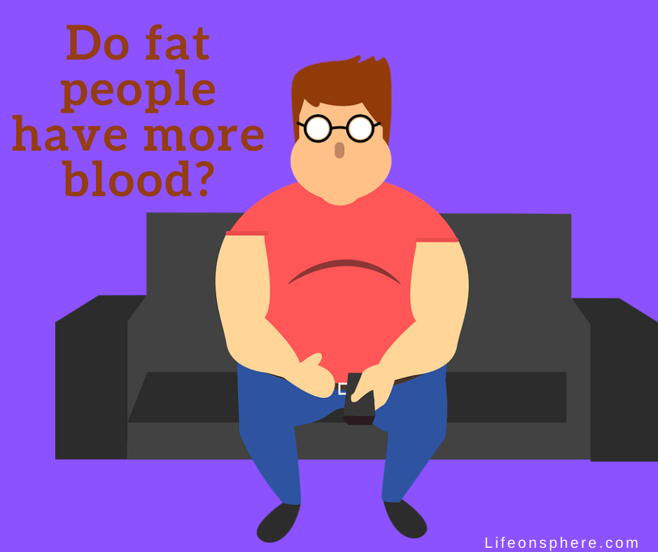 do fat people have more blood?