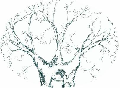 """""""The Wisdom Tree"""" Wedding Centerpiece"""