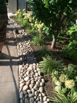 Landscaping – Condominium Common Area and Grounds
