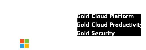 microsoft-gold-partner-logo