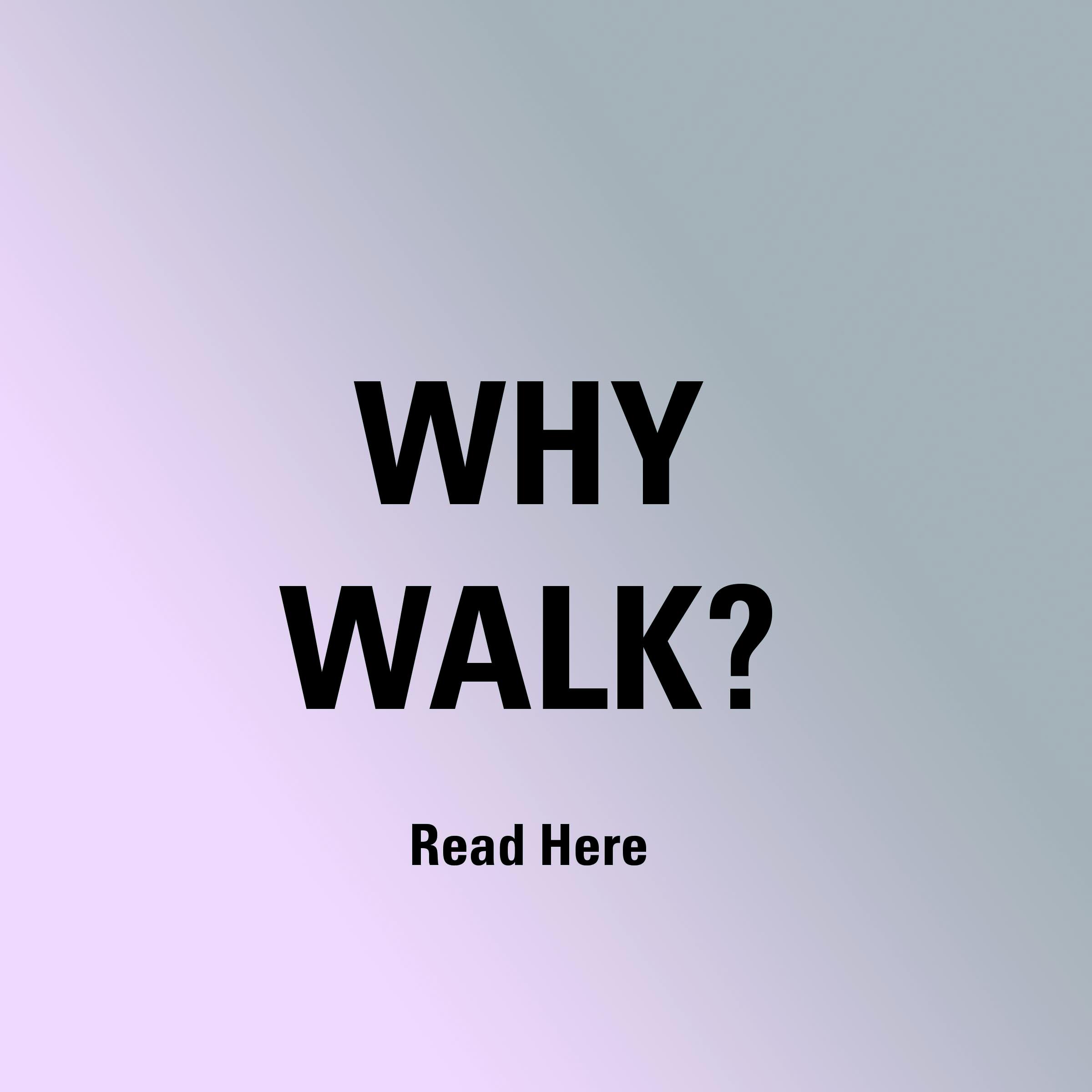 Way Walk icon on Pedometer.com