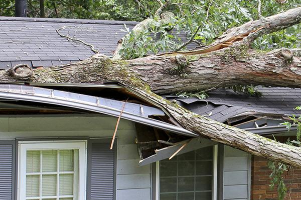 Denver Storm Damage Repair