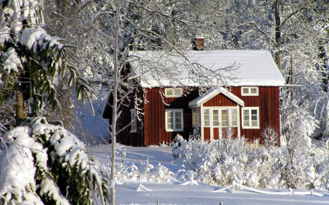 How to Prepare Your Roof for the Winter