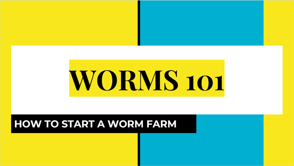 Paradise Gardeners Worms 101: How to Start a Worm Farm Powerpoint -thumb