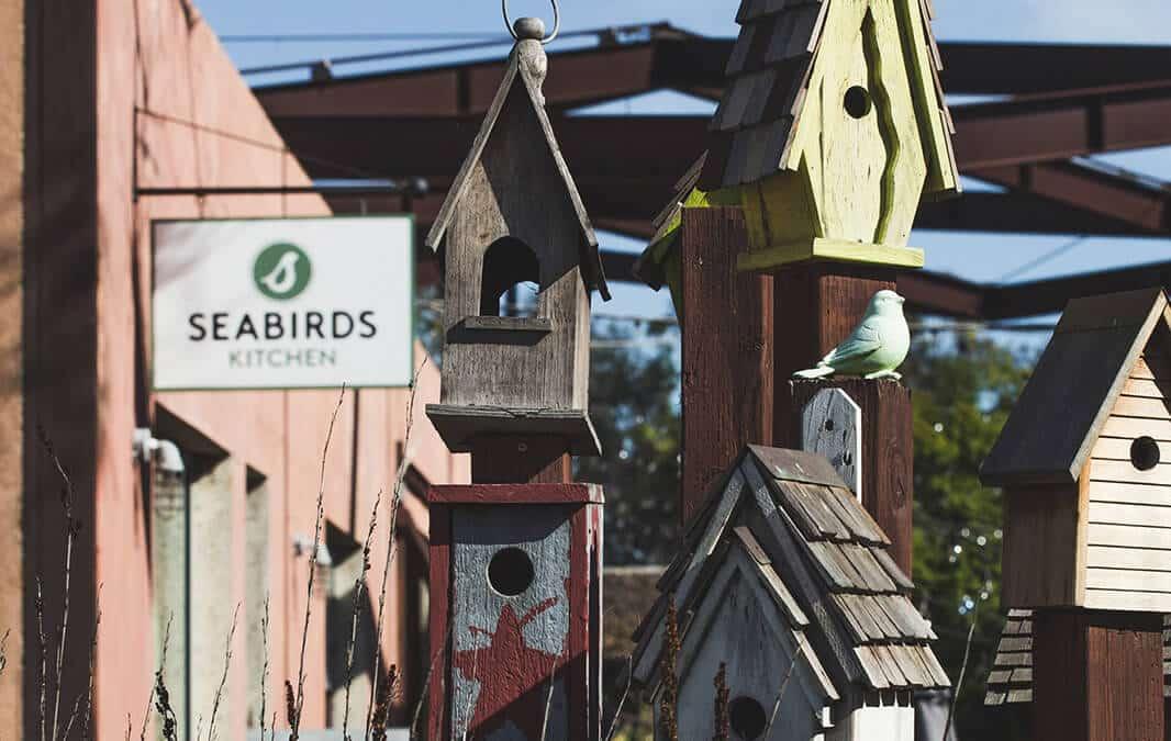 Seabirds Kitchen
