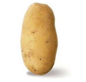 A fine Idaho spud, the pride of America