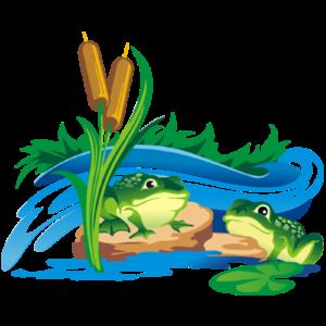 frog_cartoon_image_4999