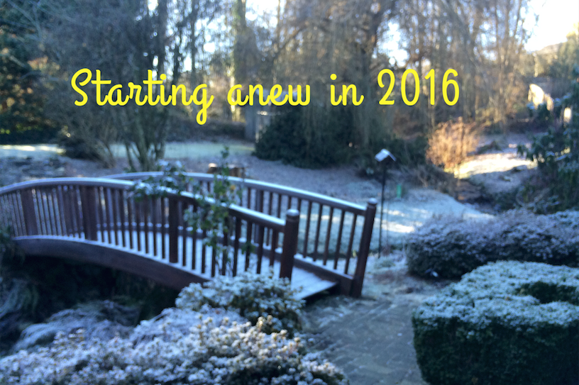 Starting Anew in 2016