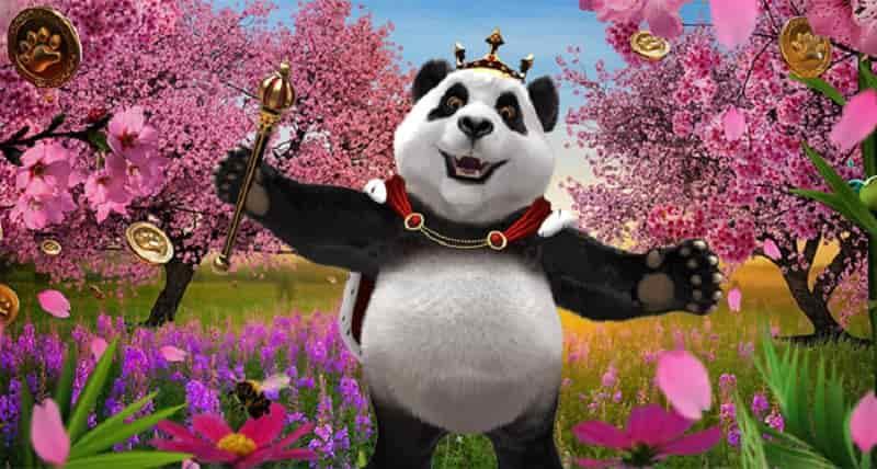 Promosi Royal Panda Mei