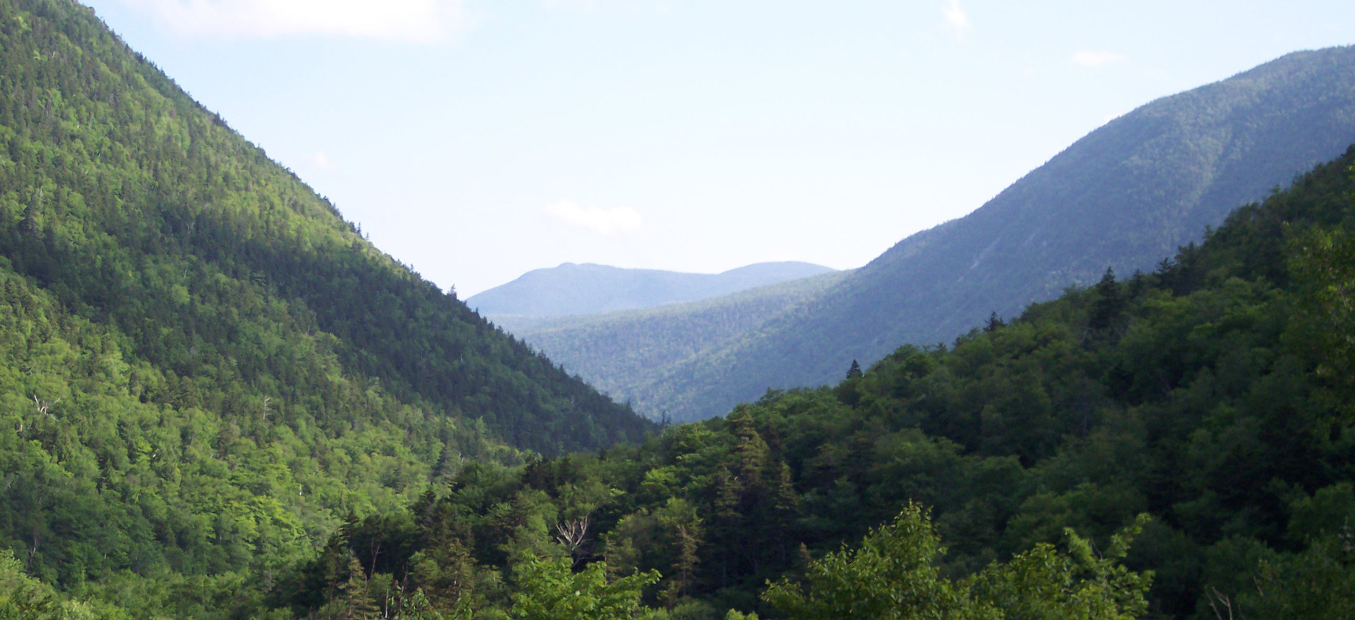 View east from Crawford Notch