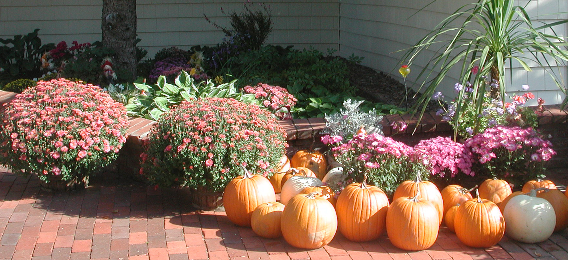 Inn at Ellis River entrance with fall flowers & pumpkins