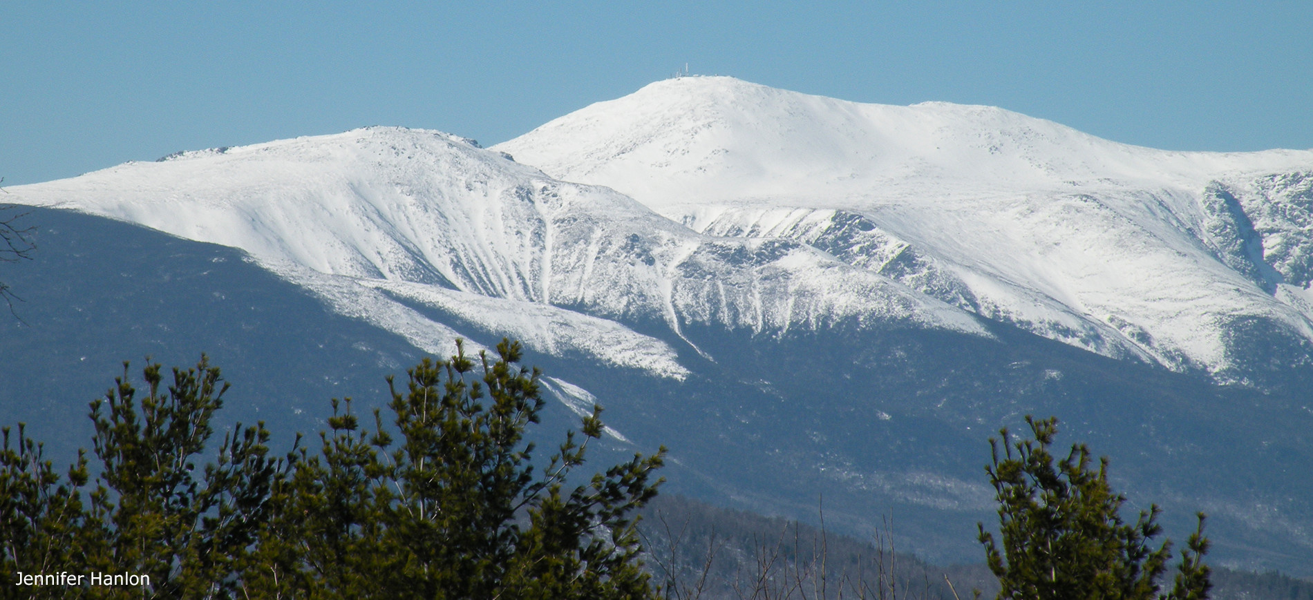 Mt Washington in Winter with evergreens in foreground