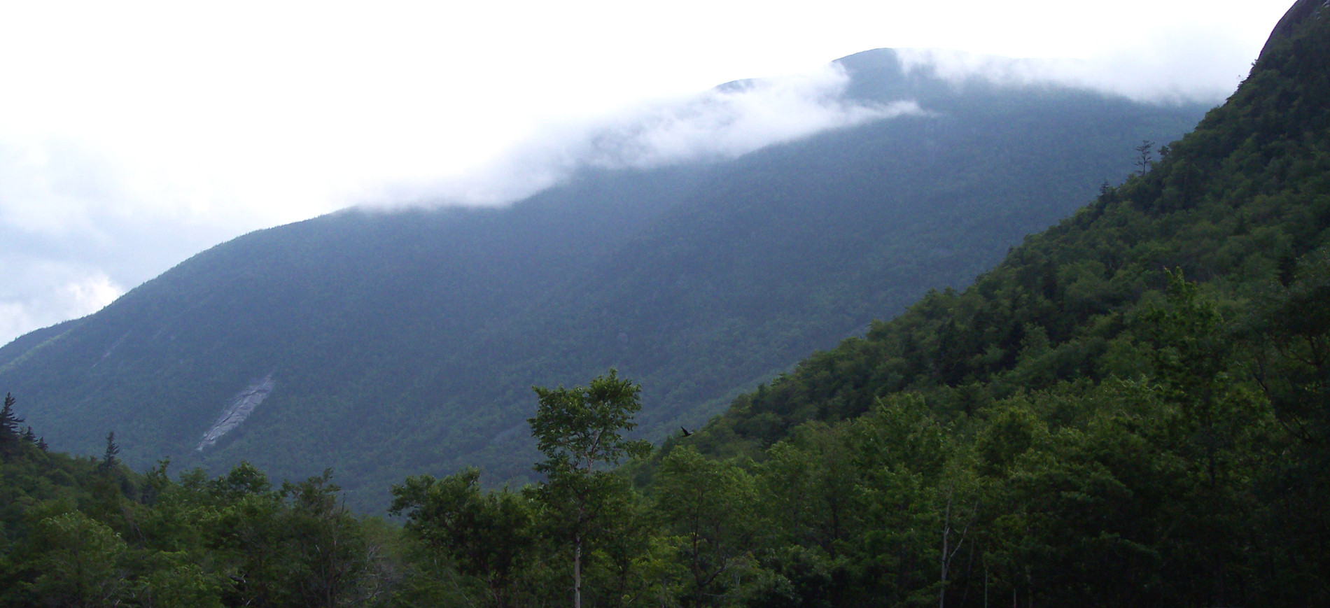 Crawford Notch view to east