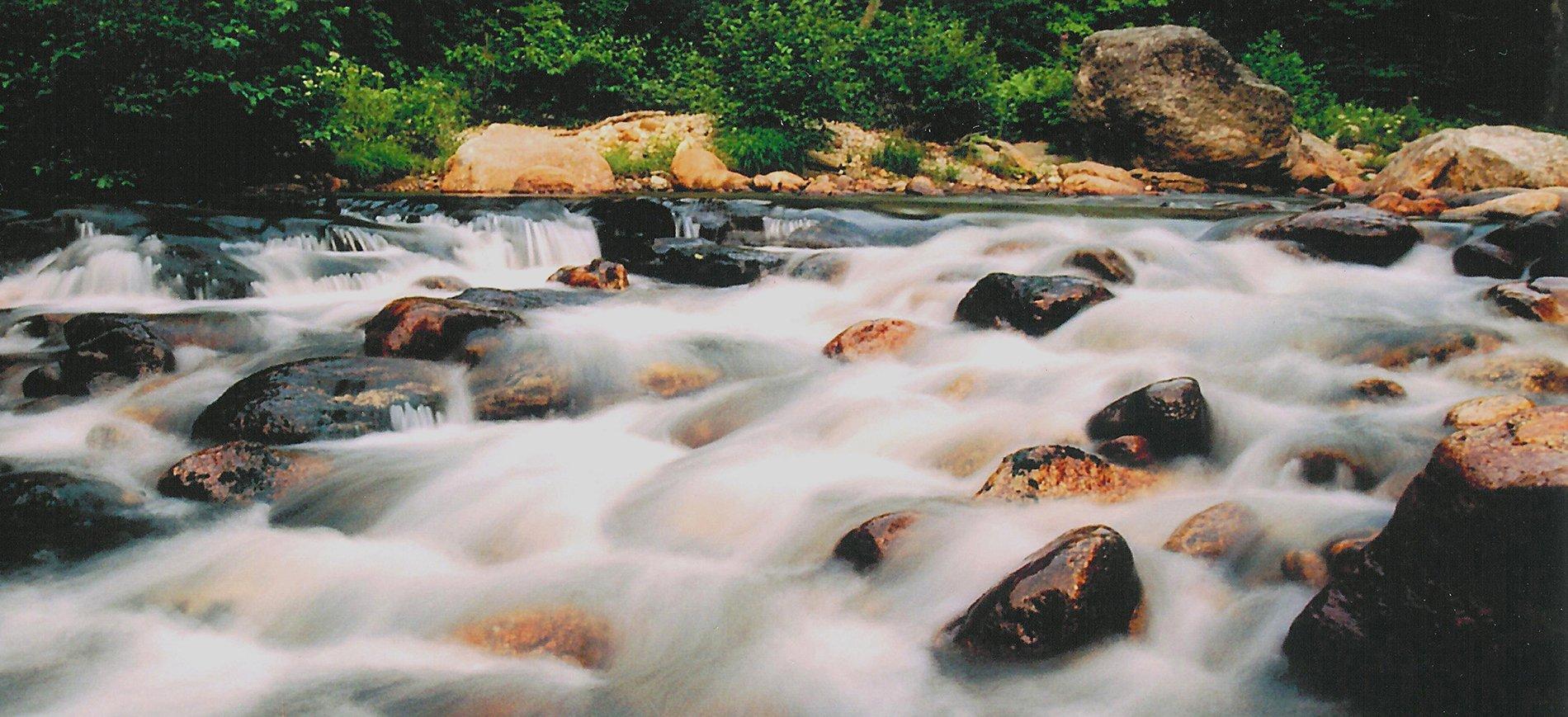 Ellis River rapids