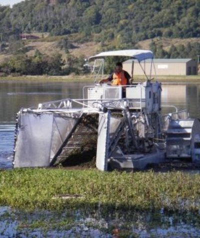 Ecologist Review of Environmental Factors REF of bird impacts from harvesting of waterweeds, Lismore City Council