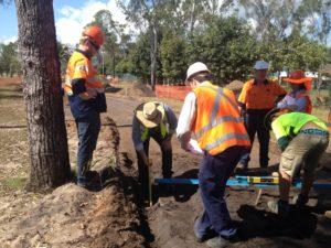 arborist tree development monitor 300x225 Arborist Reports and Plans for Development