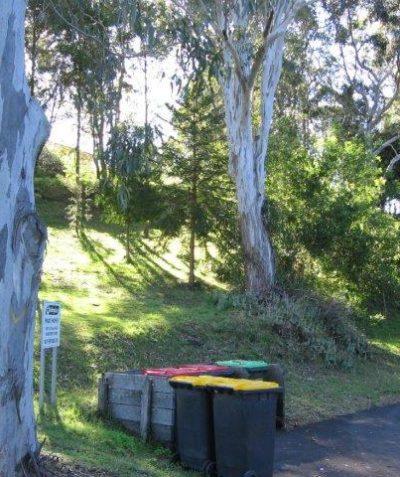 Arborist tree impact assessment report for senior's home development in Koala habitat, Goonellabah via Lismore