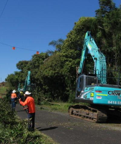 Pre-clearing ecologist assessment of roadside vegetation, Macleans Ridges via Lismore