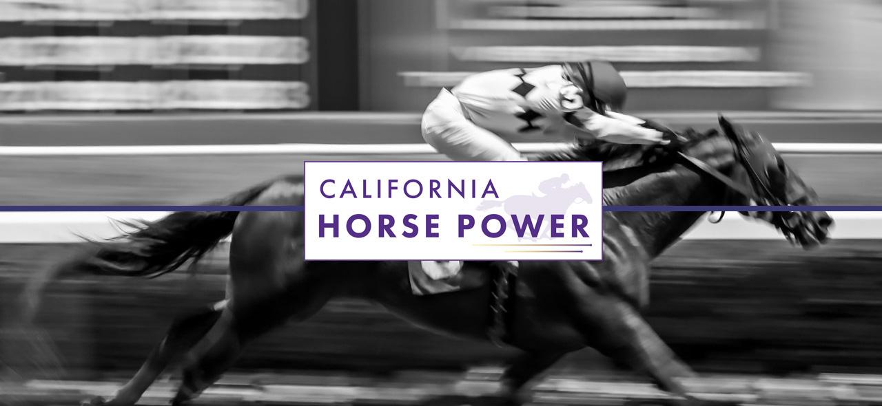 California Horse Power Horse and Jockey