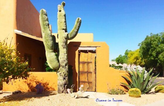 Tucson Medicare plans