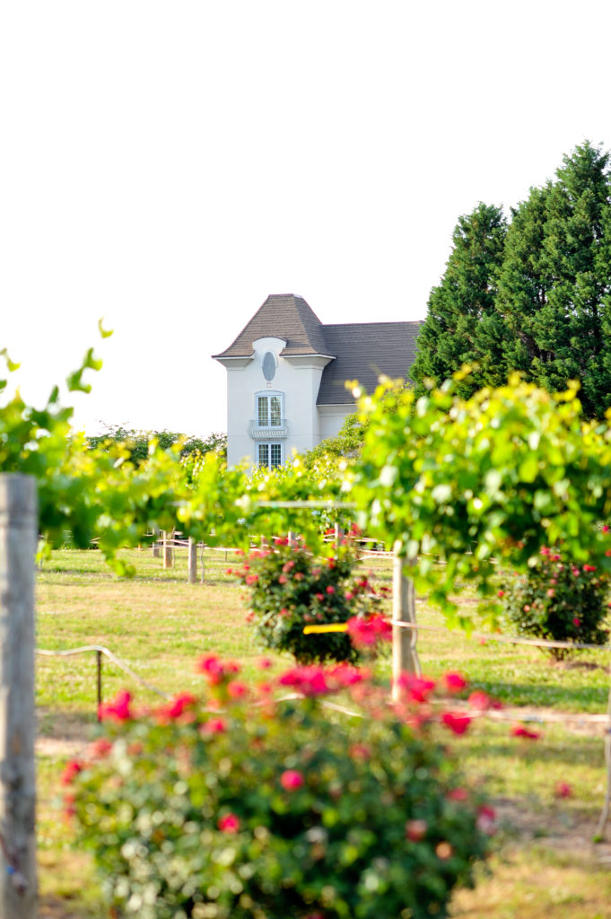 Louella Reese Chateau Elan Visit // Chateau Elan Winery & Resort