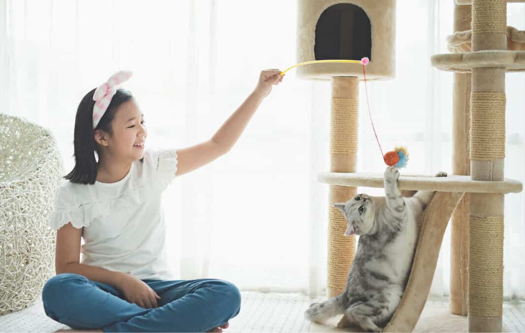 child and cat playing