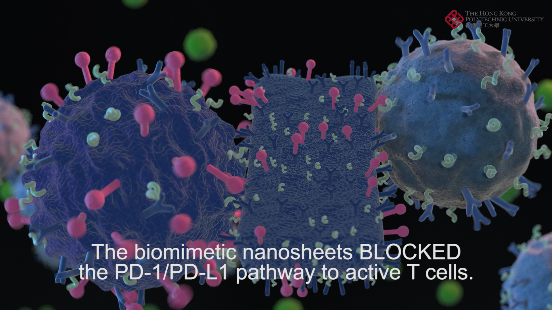Biomimetic Nanosheets for Cancer Photothermal and Enhanced Immune Therapy