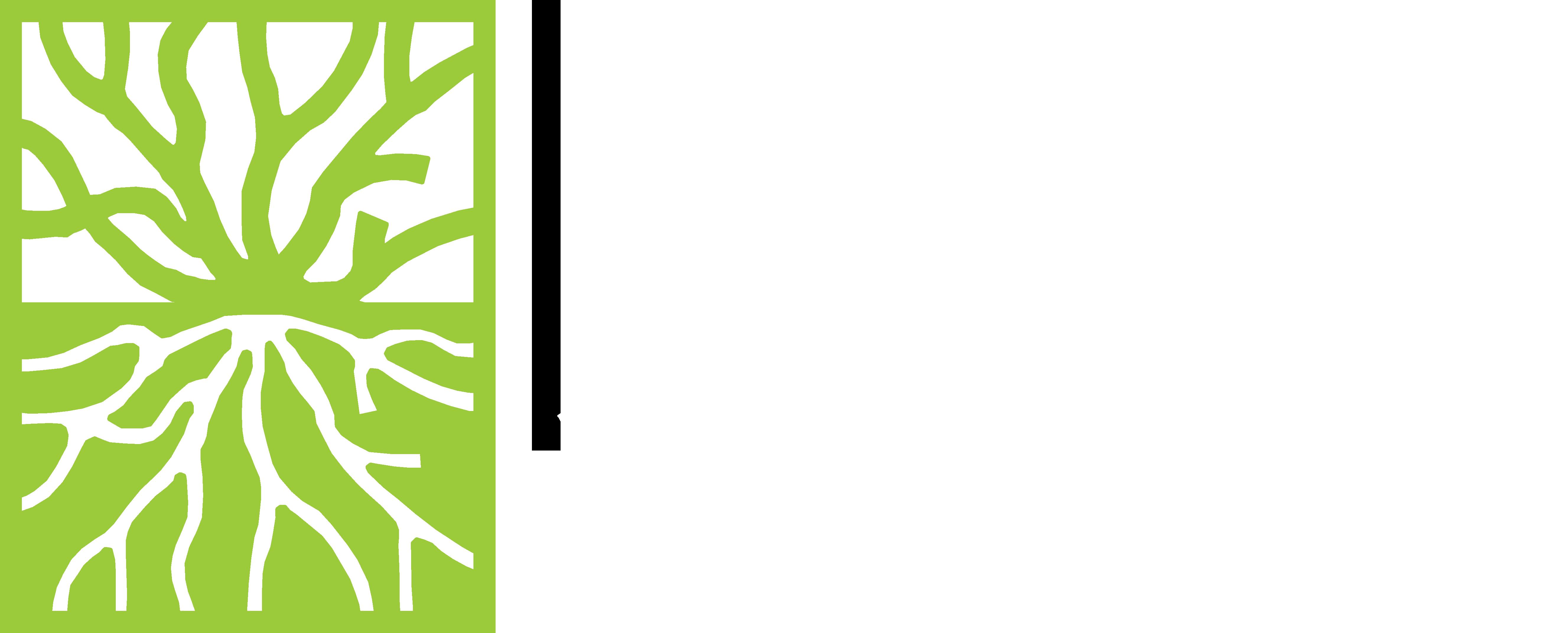 Root Design Studio