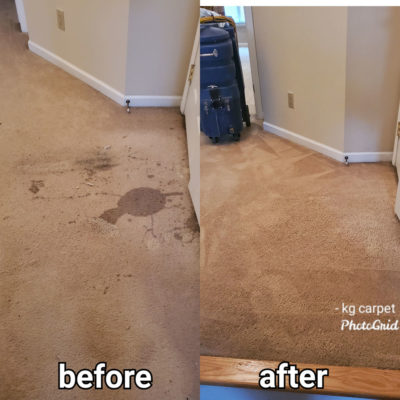 Expert Area Rug, Carpet and Upholstery Cleaning in NYC