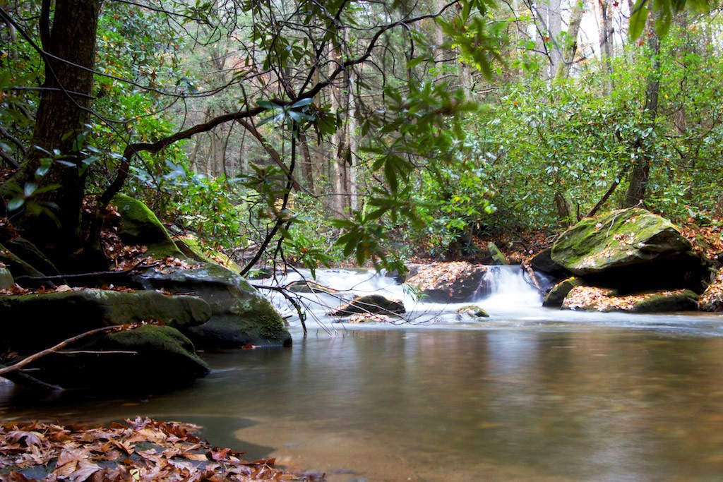 Chattahoochee National Forest - Dawsonville
