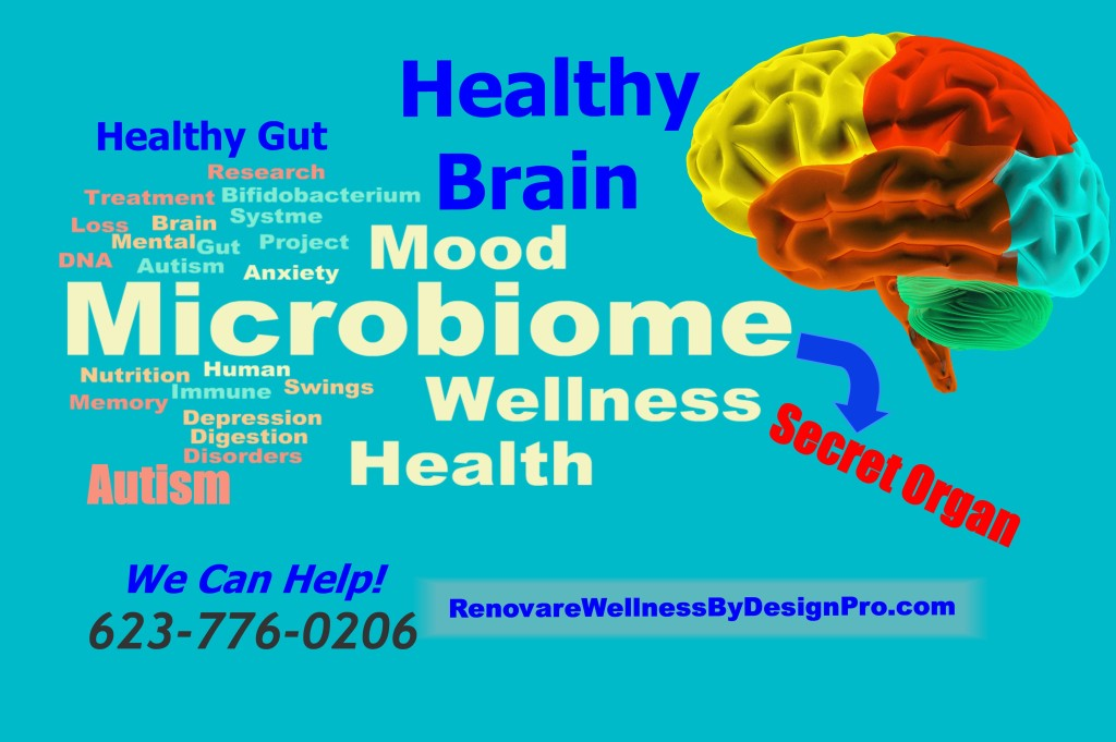 RWBD Microbiome healthy brain brain waves brain mapping autism Asperger's Syndrome ADD ADHD attention deficit disorder anixety depression memory loss