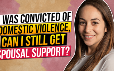 I was convicted of domestic violence, can I still get spousal support?