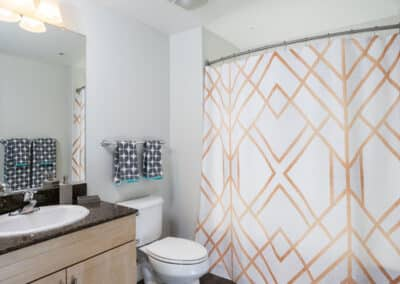 Bathroom with big vanity and shower curtain