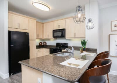 kitchen with black appliances and decor